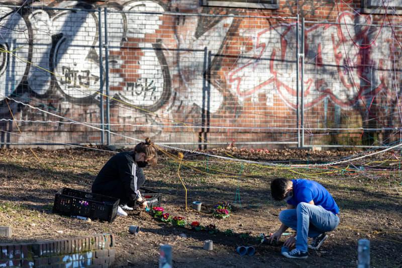"""Bäume damit St. Pauli bunt bleibt. Am sonnigen Sonntagnachmittag, 21.2.2021, haben solidarische Nachbar*innen gemeinsam mit St. Pauli Code JETZT! am Neuen Pferdemarkt über 300 Blumen gepflanzt. Blumen statt """"Paulihaus""""."""